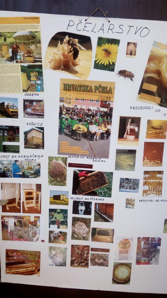 """Projekt """"Pčele"""" u skupini Bubamare"""