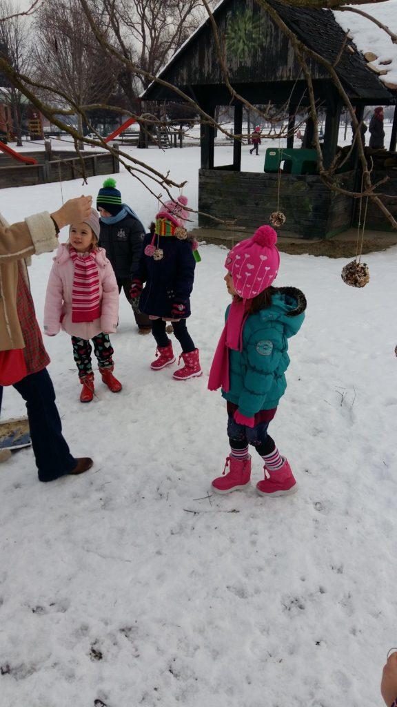 Cvjetići uče kako hraniti ptičice zimi