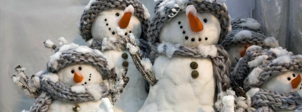 Snjegoviću, snjegoviću ti si slika zime…