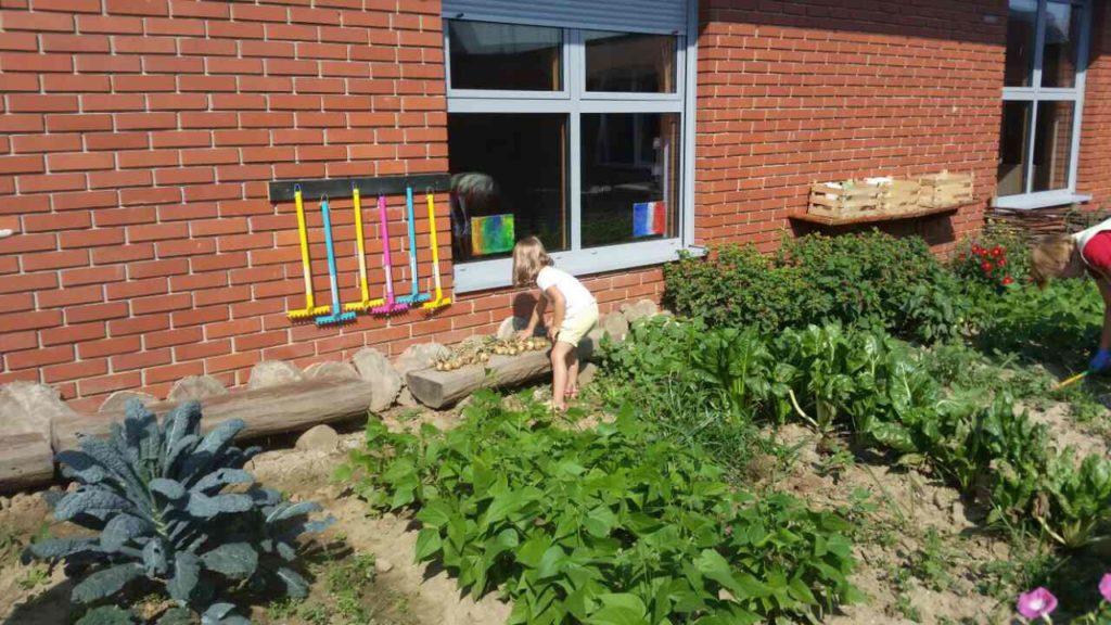 Loptice i kroz ljeto brinu o vrtu